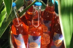 Покупайте Aperol Spritz в фирменных бутылочках Fiji